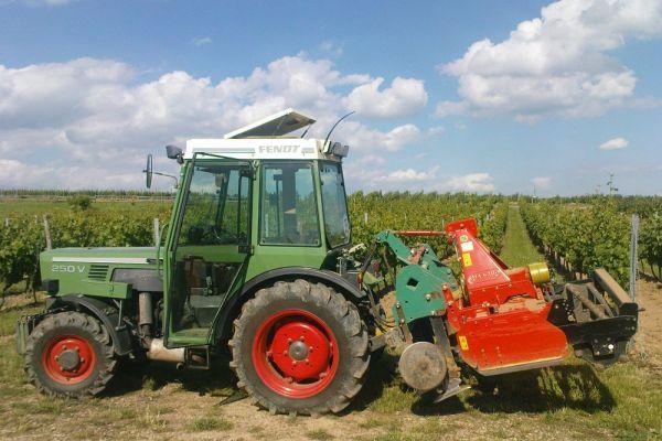 weinbau-wagner-traktor-auf-feldCD698CC0-7A56-8536-D833-2EE8AEC380AB.jpg